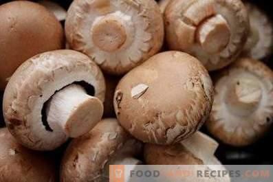 How to store fresh champignons