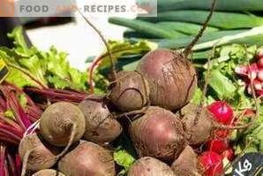 How to freeze the beets for the winter